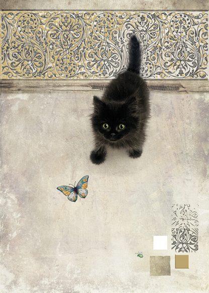 Bug Art D147 Black kitten greetings card