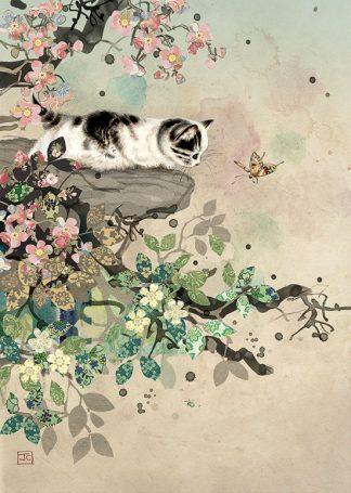 Bug Art D160 Kitten Ledge greetings card