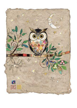 D172 Night Owl bug art greeting card