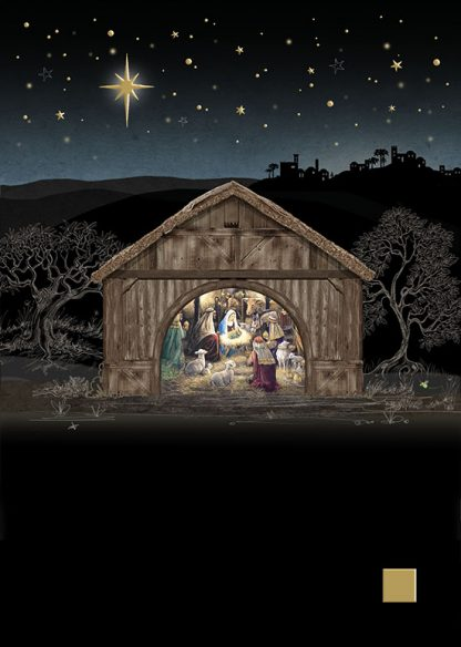 MC048 Nativity Stable bug art greeting card