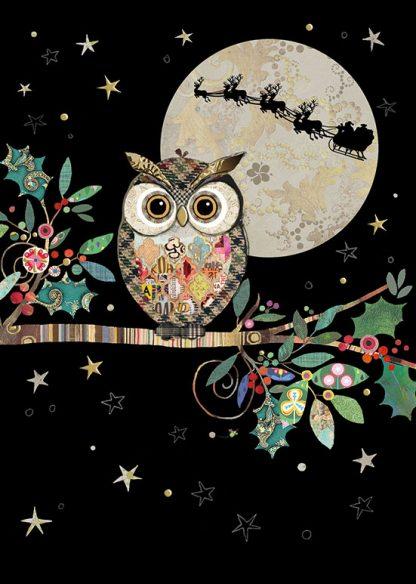 MC049 Christmas Owl bug art greeting card