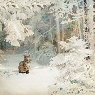 WC038 Snowy Cat