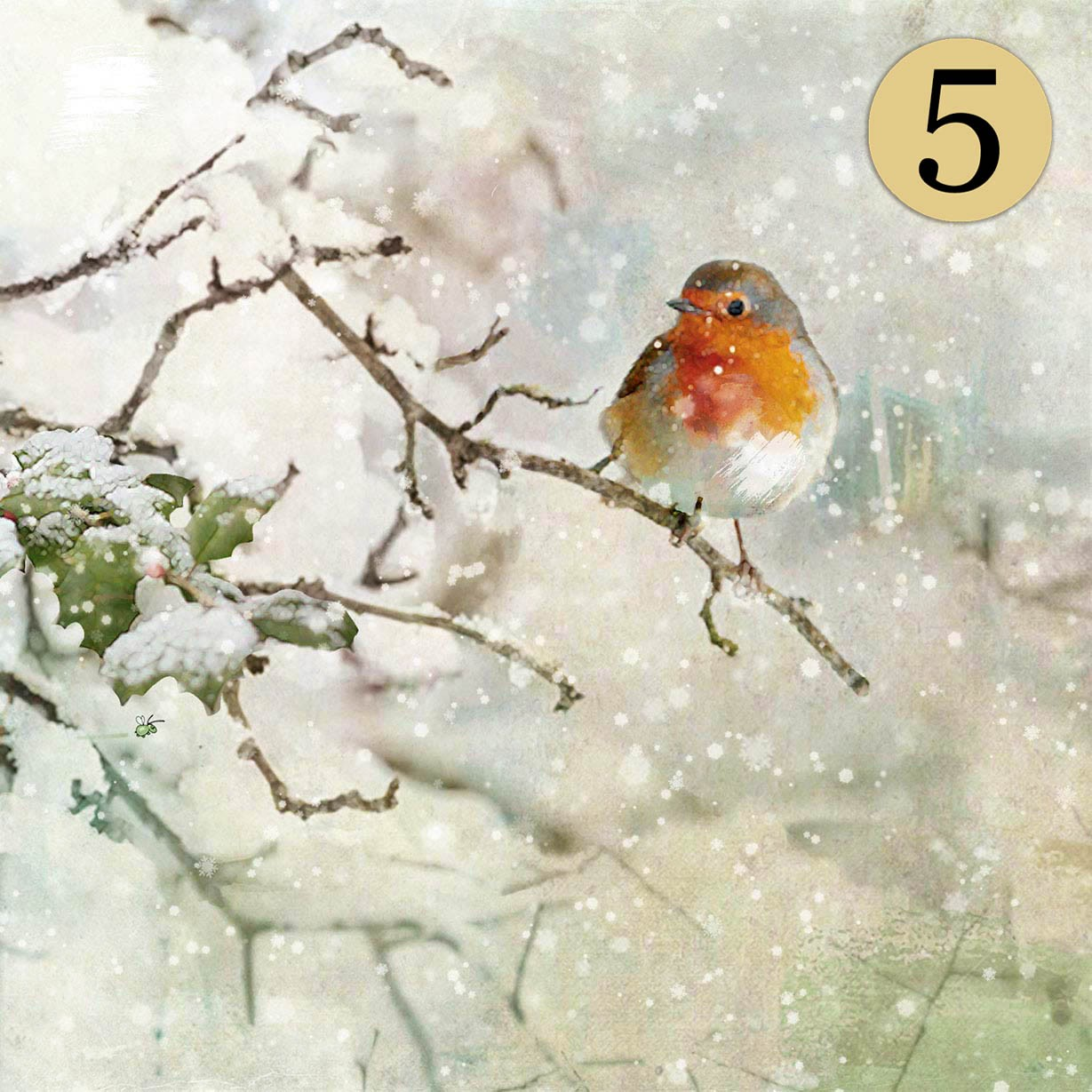 WCC029 Robin Red Breast Five Pack