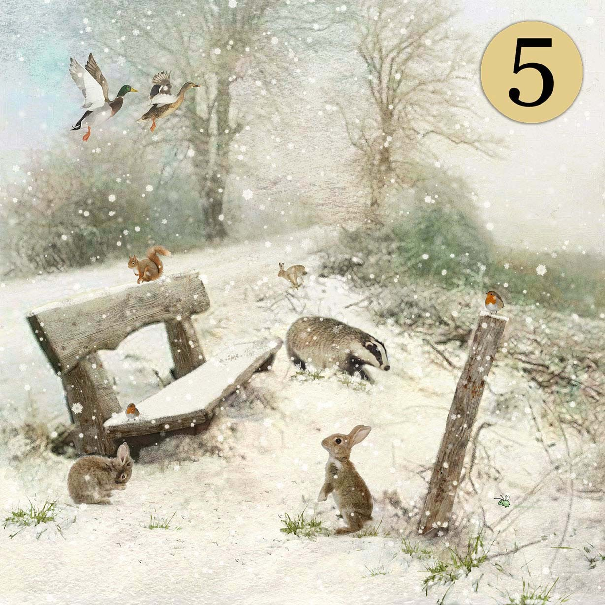 WCC035 Winter Bench Five Pack