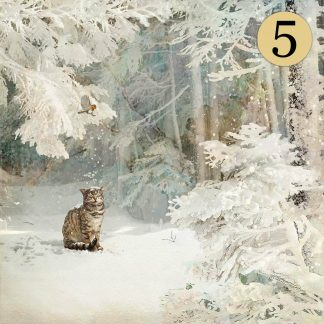 WCC038 Snowy Cat Five Pack