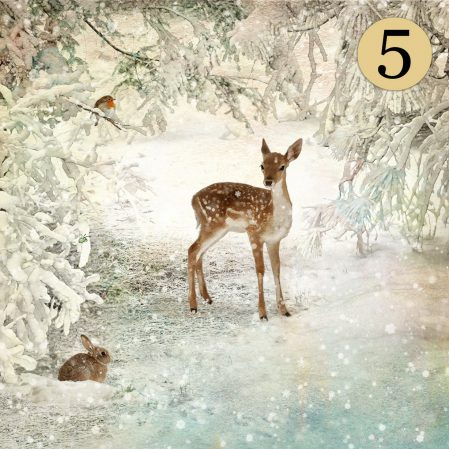 WCC040 Winter Glade Five Pack