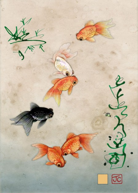 Bug Art D121 Five Fantailed Fish greetings card