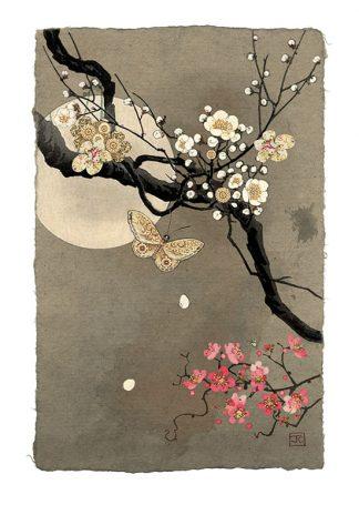 Bug Art D156 Moonlight Blossom greetings card