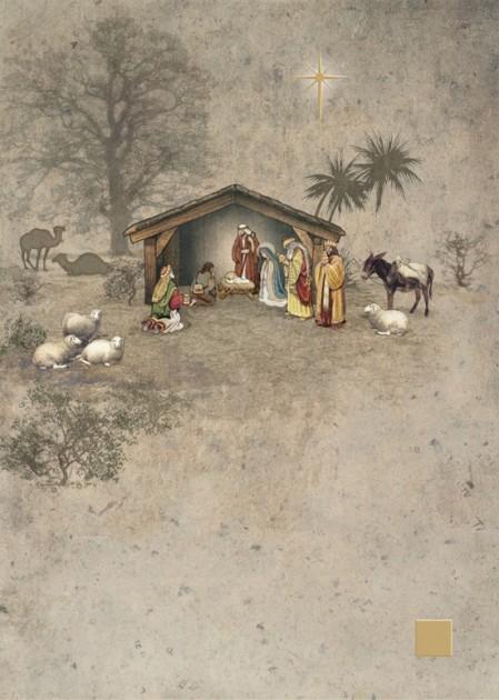 Bug Art dc011 Nativity greetings card