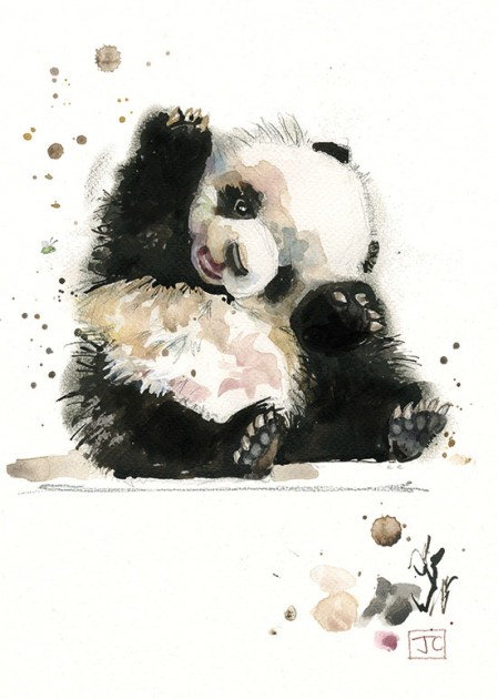 Bug Art F003 Baby Panda greetings card
