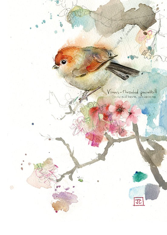 Bug Art F017 Parrotbill greetings card