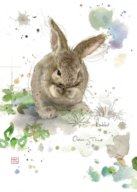 Bug Art F024 Cleaning Rabbit greetings card