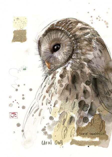 Bug Art F032 Ural Owl greetings card