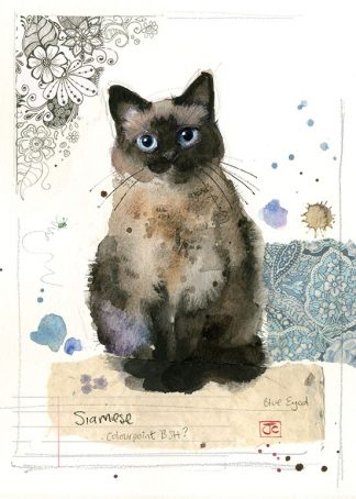 Bug Art F034 Siamese Cat greetings card