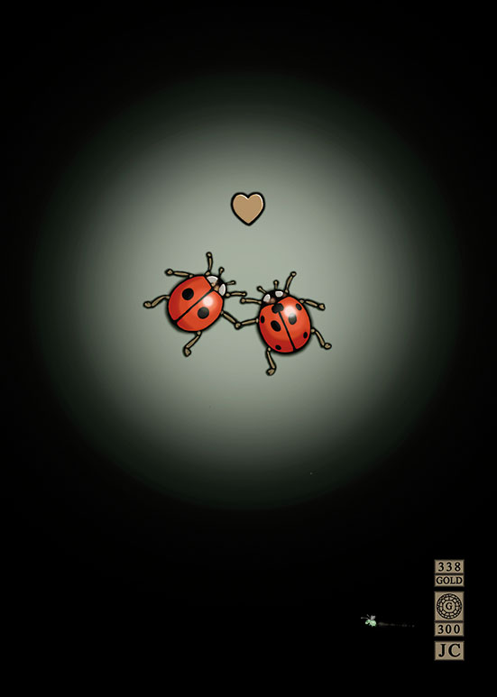 Bug Art m070 ladybirds in love greetings card